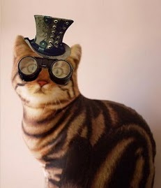 STEAMPUNK+CAT,+kdkd8.jpg